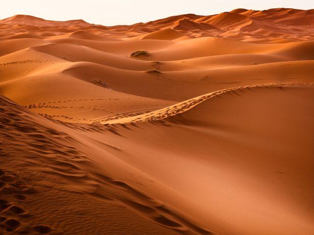 Kommer Jesu Kristi brud att lockas ut i öknen?